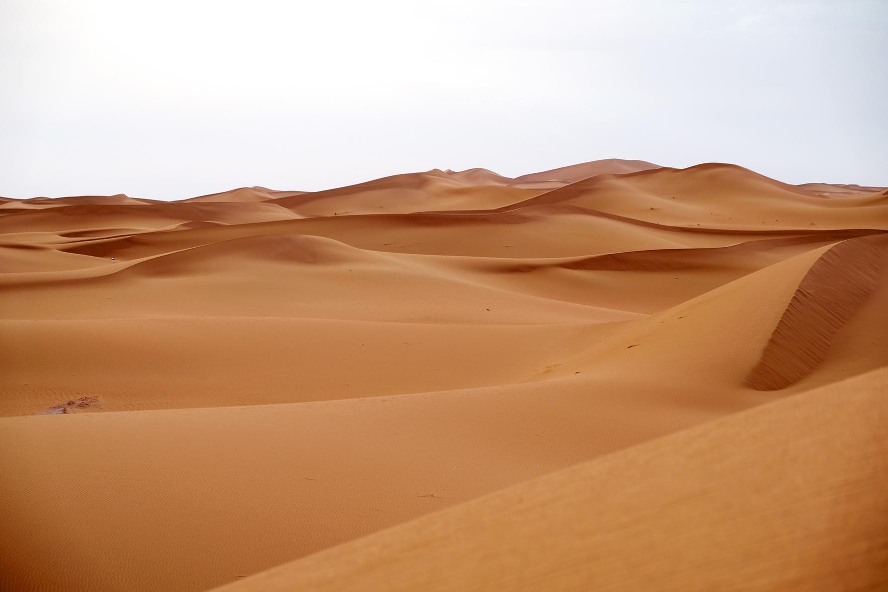 Elsbeth Neyens Mhamid Desert.jpg