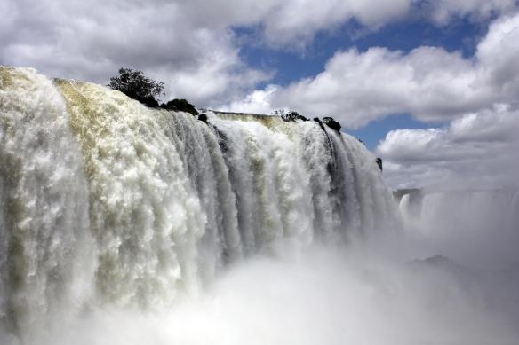 Nature_Brazil
